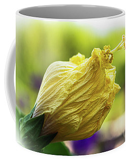 Yellow Mature Hibiscus  Coffee Mug