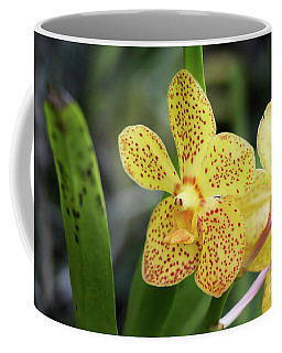 Yellow Spotted Orchids Coffee Mug