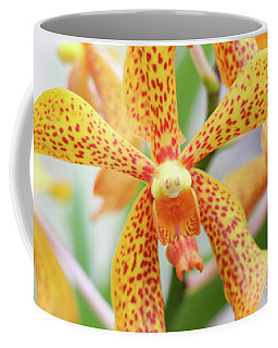 Yellow Spotted Spider Orchids Coffee Mug