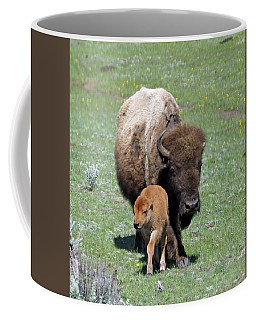 Yellowstone Bison And Calf Coffee Mug
