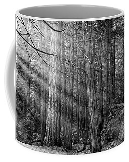 Coffee Mug featuring the photograph Yosemite Sunbeams by Rand
