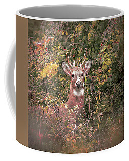Coffee Mug featuring the photograph Young Buck Portrait by Dan Sproul