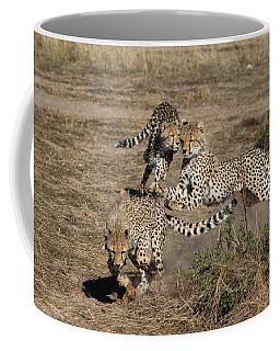 Young Cheetahs Coffee Mug