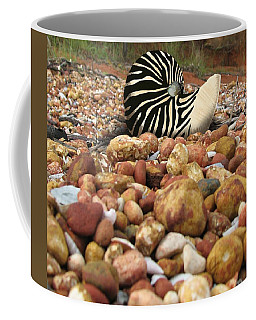 Coffee Mug featuring the mixed media Zebra Nautilus Shell On Bauxite Beach by Joan Stratton