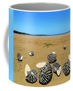 Coffee Mug featuring the mixed media Zebra Nautilus Shells On The Beach  by Joan Stratton