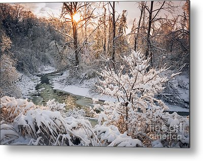 Snowy Brook Metal Prints
