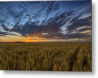 Farming Metal Prints