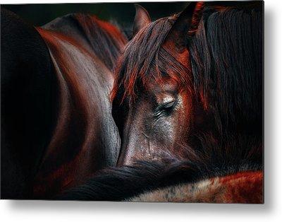 Dark Horse Metal Prints