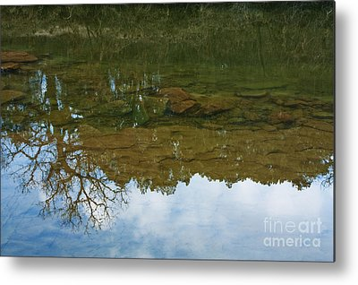 Trees Reflecting In Water Photographs Metal Prints