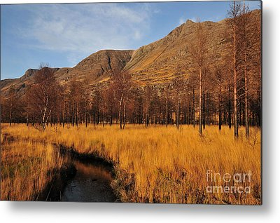 Torridon Metal Prints