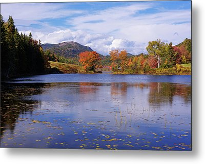Acadia National Park Metal Prints
