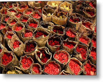 Roses Photographs Metal Prints
