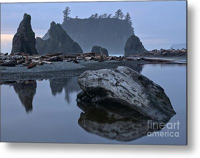 Washington Driftwood Beach Fog Metal Prints