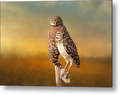 Burrow Owl Metal Prints