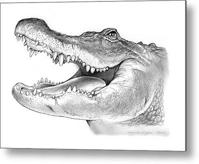 Alligator Metal Prints