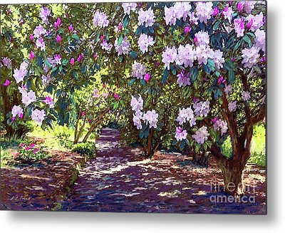Rhododendron Metal Prints