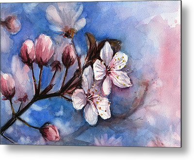 Cherry Blossoms Metal Prints