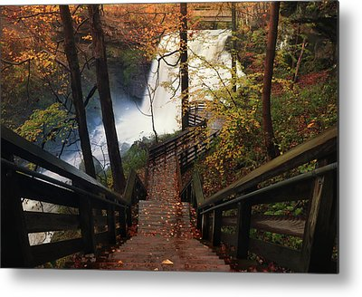 Brandywine Metal Prints