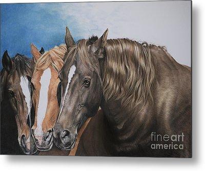 Chestnut Dun Horse Metal Prints