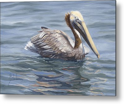 Brown Pelicans Metal Prints