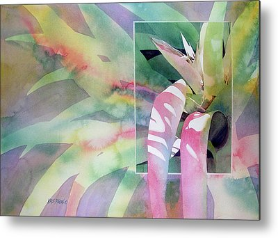 Epiphyte Metal Prints