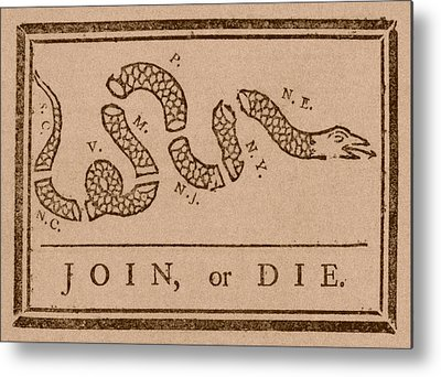 Snake Metal Prints