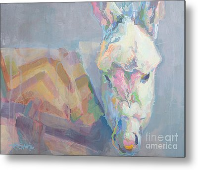 Donkey Foal Metal Prints