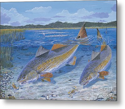 Tarpon Metal Prints