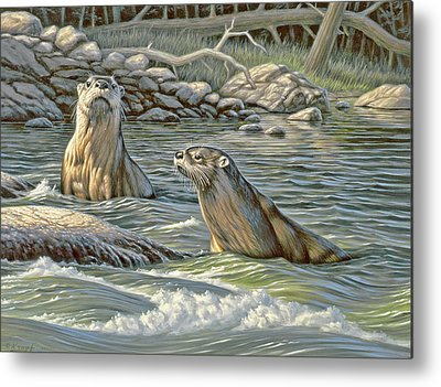 Otter Metal Prints