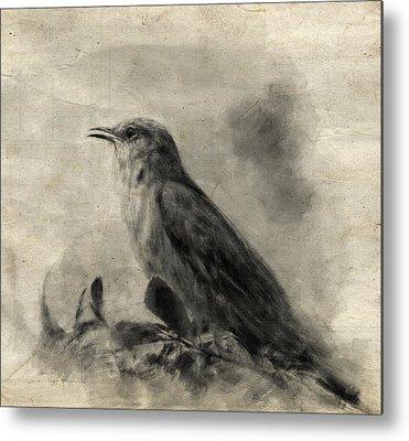 Mockingbird Drawings Metal Prints