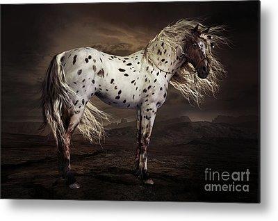 Appaloosa Horse Metal Prints