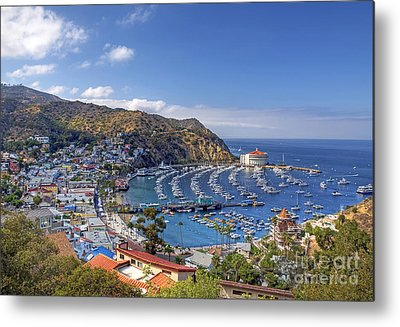 Catalina Island Metal Prints