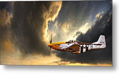 Plane Metal Prints
