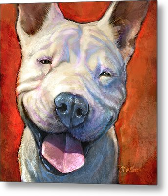 Pet Portraits Metal Prints