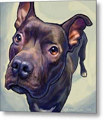 Pet Portraits Metal Prints