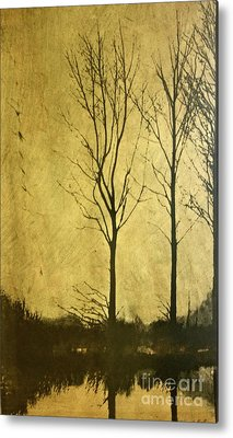 Trees Reflecting In Water Mixed Media Metal Prints