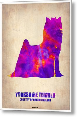 Yorkshire Terrier Metal Prints