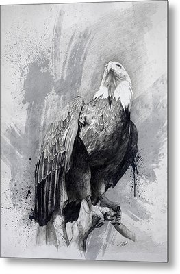Eagle Drawing Metal Prints