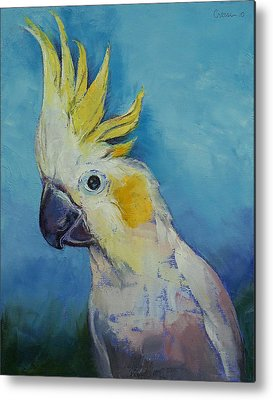 Cockatoo Metal Prints