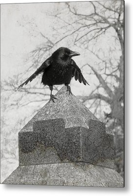 Gothicolors With Crows Metal Prints