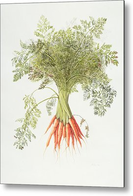 Carrot Metal Prints
