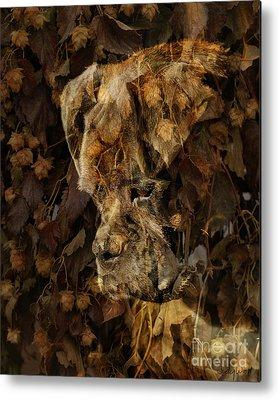 Judy Wood Digital Art Metal Prints