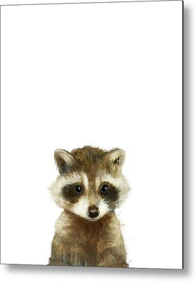 Raccoon Metal Prints