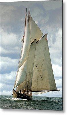 Sailboats Metal Prints