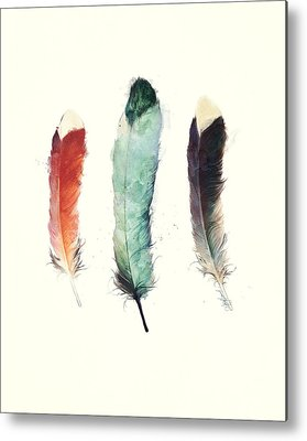 Feathers Metal Prints