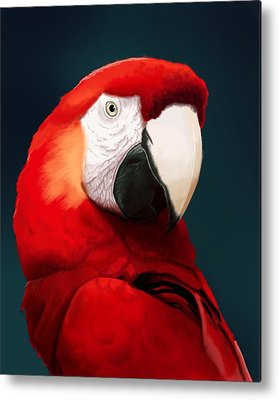 Macaws Metal Prints