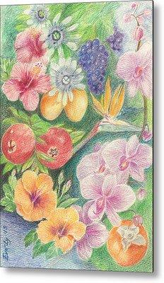 Passionfruit Drawings Metal Prints