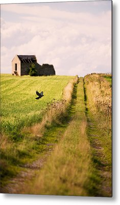 Country Lanes Photographs Metal Prints