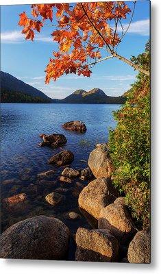 Autumn Pond Metal Prints