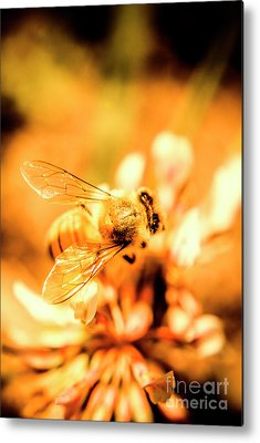 Art Nature Bee Metal Prints